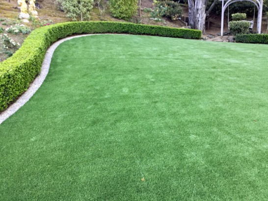 Artificial Grass Spindale North Carolina Lawn artificial grass