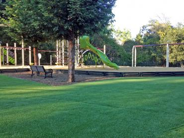 Artificial Turf Rock Hill South Carolina Playgrounds  Parks artificial grass