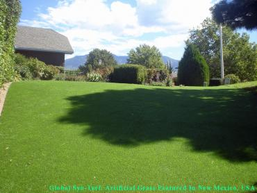 Fake Pet Turf Mount Holly North Carolina Installation  Back artificial grass
