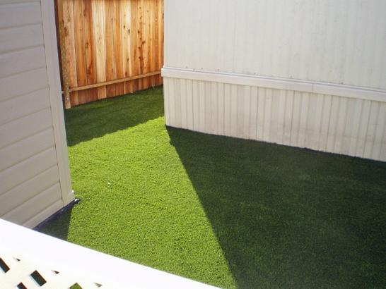 Artificial Grass Photos: Fake Pets Areas Monarch Mill South Carolina Installation