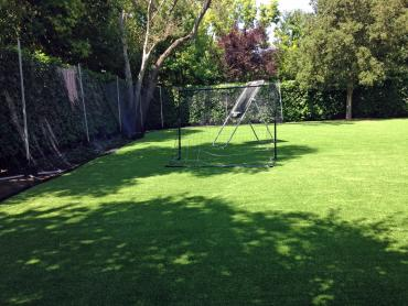 Artificial Grass Photos: Fake Turf Sports Fields Dellview North Carolina  Back Yard