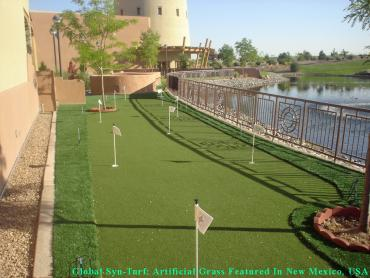 Golf Putting Greens Pineville North Carolina Synthetic Grass artificial grass