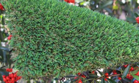 synthetic grass Patriot Spring-76