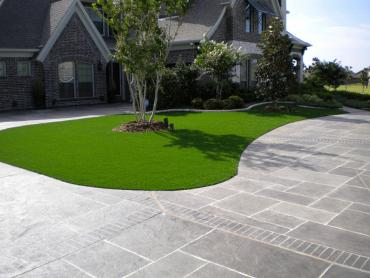 Synthetic Grass Cleveland North Carolina  Landscape  Front artificial grass