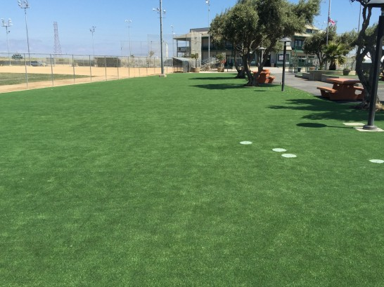 Synthetic Lawn Mulberry, North Carolina Home And Garden, Recreational Areas artificial grass