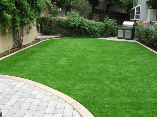Synthetic Turf Rhodhiss North Carolina Lawn artificial grass