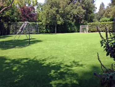 Artificial Grass Photos: Synthetic Turf Sports Fields Lesslie South Carolina  Back