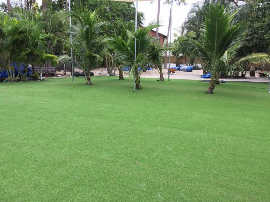 Artificial Grass Photos: Turf Grass Elkin, North Carolina Backyard Playground, Commercial Landscape