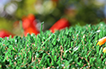 Artificial Grass Pet Turf